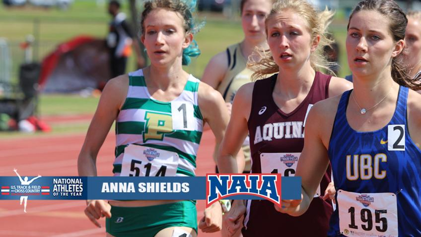 Point Park's Shields named NAIA Women's Outdoor Track Athlete of the Year