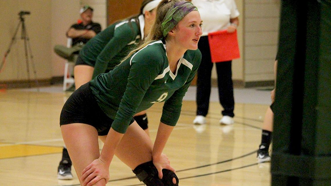 Point Park beats WVU Tech in four sets to begin weekend
